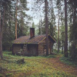 houses-wood-tree-house